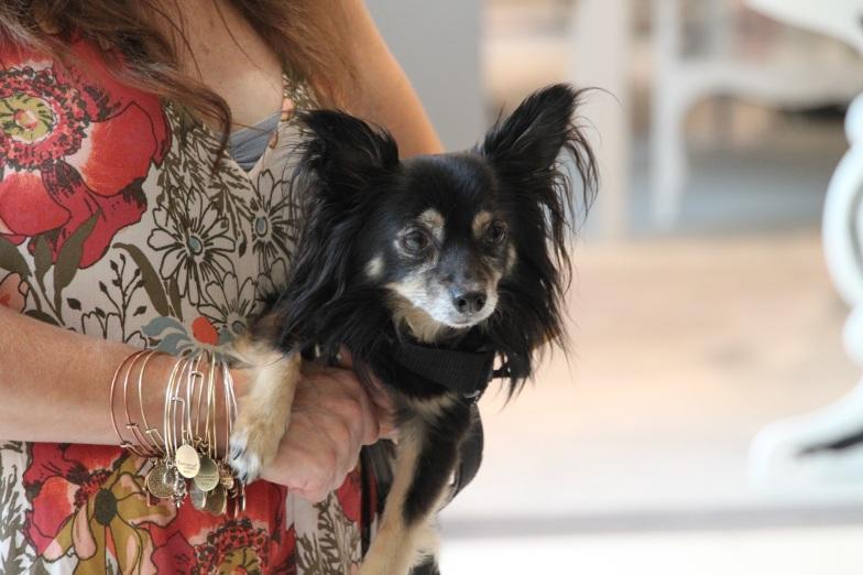 Lubi at Bloomies